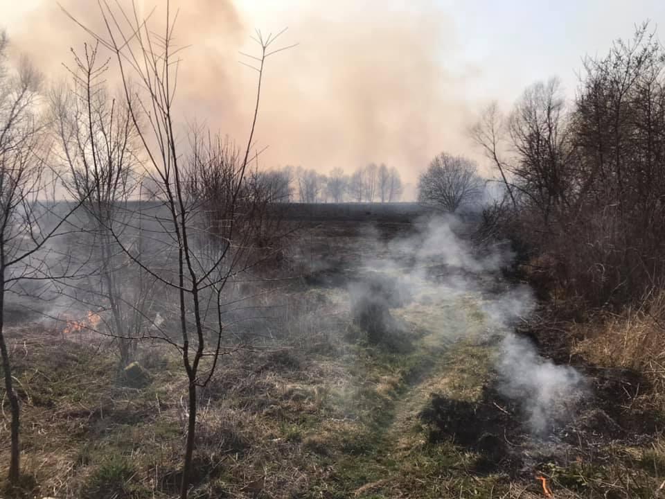 Протягом доби 29 березня сокальські рятувальники здійснили 7 виїздів на пожежі сухої трави
