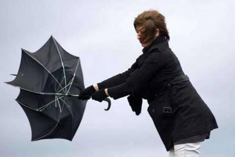 Погода буде гіршою: 14-15 квітня сильний вітер і заморозки