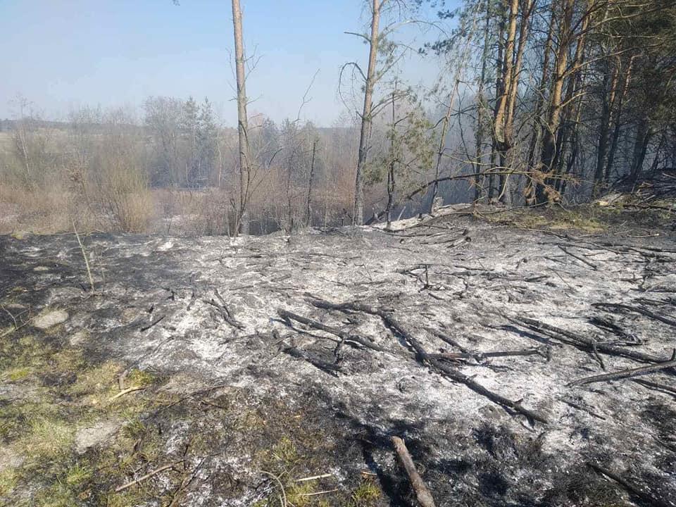 В Сокальському районі знову пожежі сухої трави та чагарнику