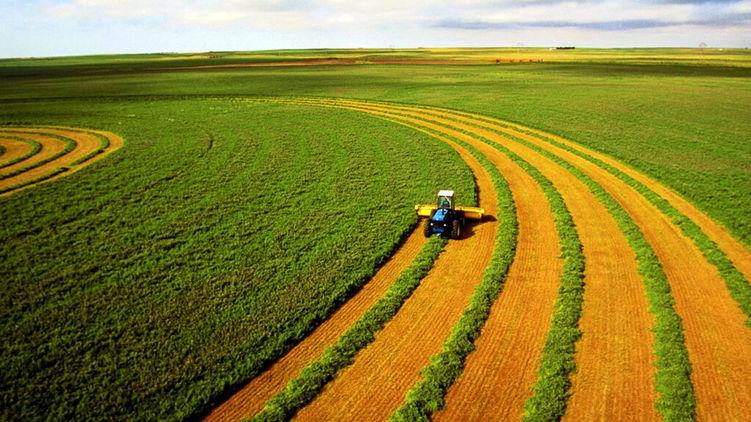Закон про відкриття ринку землі опубліковано! Він вступить у дію 1 липня 2021 року