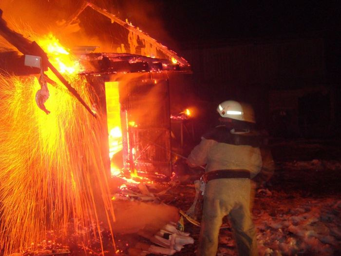 На Радехівщині під час пожежі господарської будівлі вогнеборці врятували 10 птахів