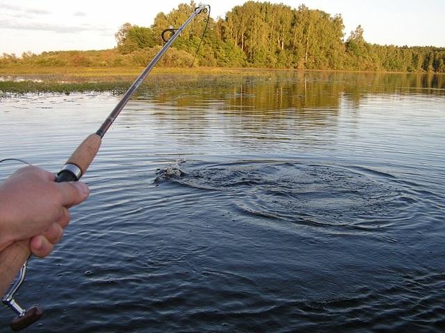 На Сокальщині у ставку втопився рибалка