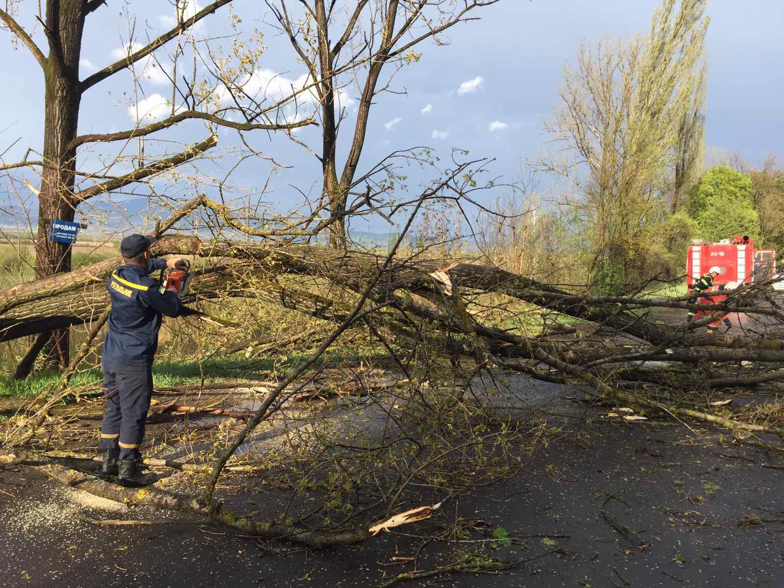 На Сокальщині негода знеструмила 33 населених пункти