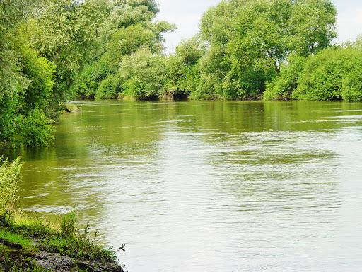 На Сокальщині у річці Західний Буг виявили тіло волинянина