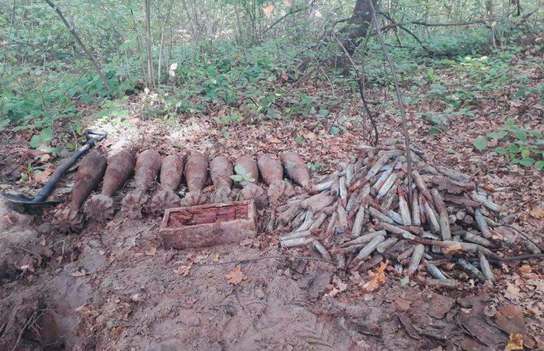 9 мін та 570 набоїв часів ІІ Світової виявили на Сокальщині під час прогулянки