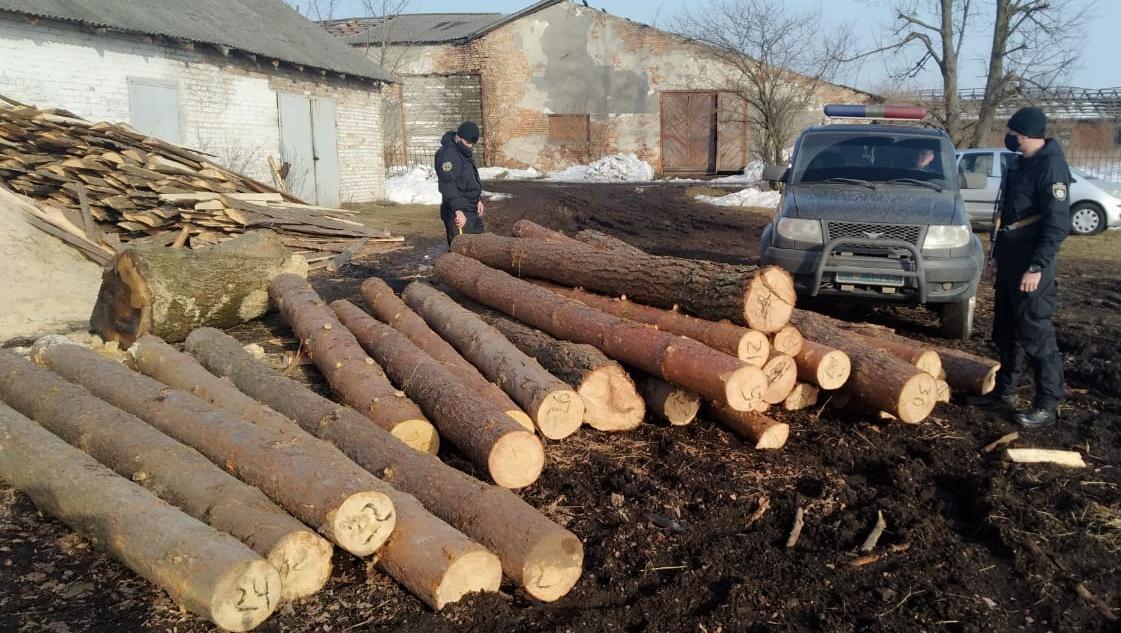 У Червоноградському районі правоохоронці виявили та вилучили майже три десятки нечипованих колод сосни