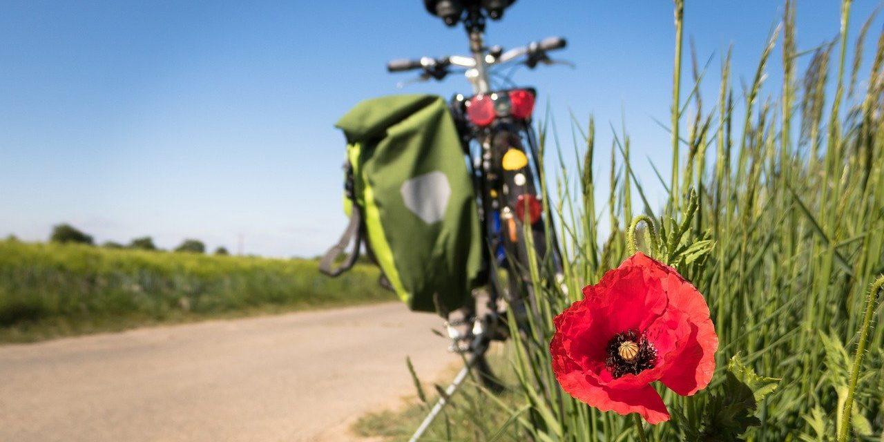 Що повинен пам'ятати та виконувати велосипедист?