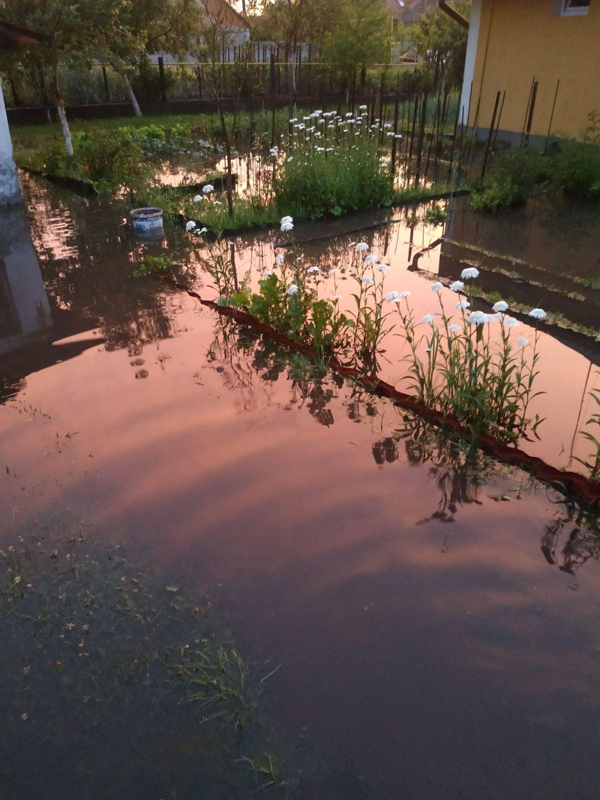 Червоноград після зливи підтопило