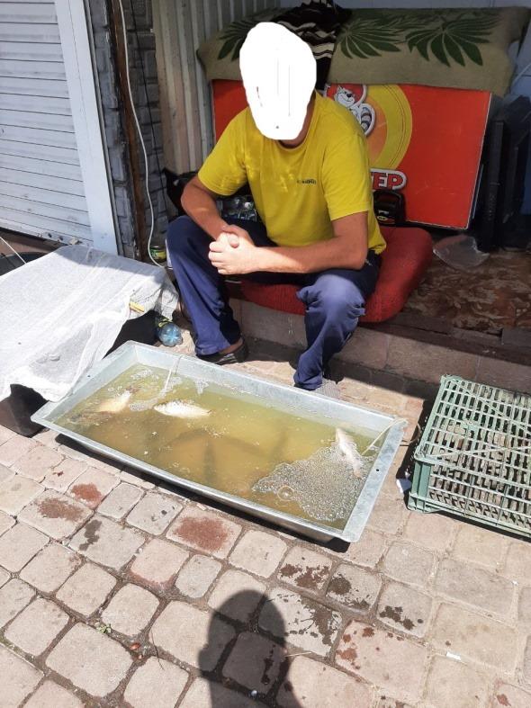 У Червонограді незаконно продавали рибу та раколовки. Порушникам загрожують штрафи