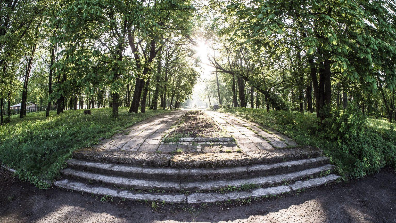 Яку назву ви б запропонували для Сокальського парку? Міська рада проводить опитування
