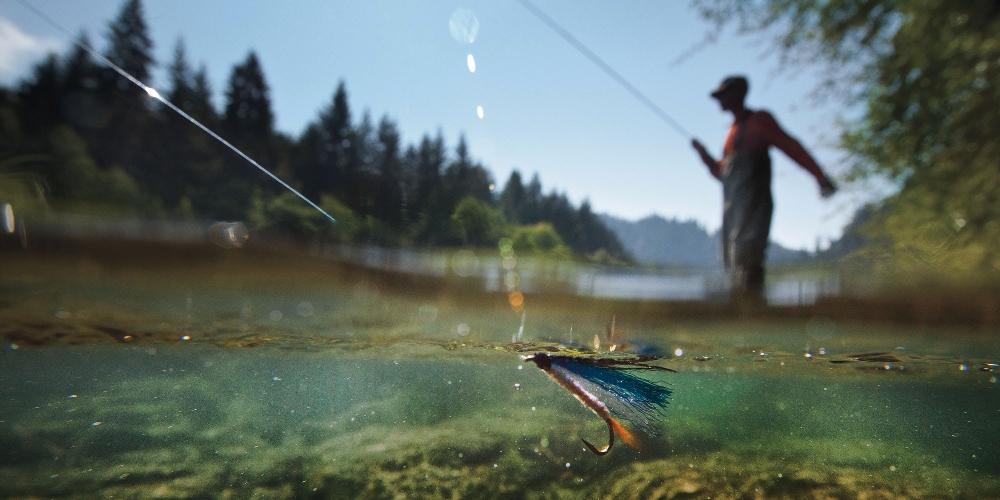 Де на Сокальщині дозволили ловити рибу в нерестовий період