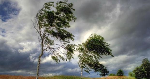 18 травня на Сокальщині сильні пориви вітру