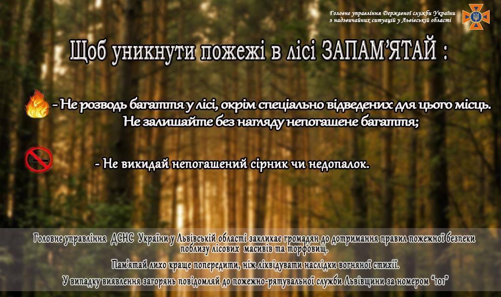 Відпочивай в лісі безпечно!
