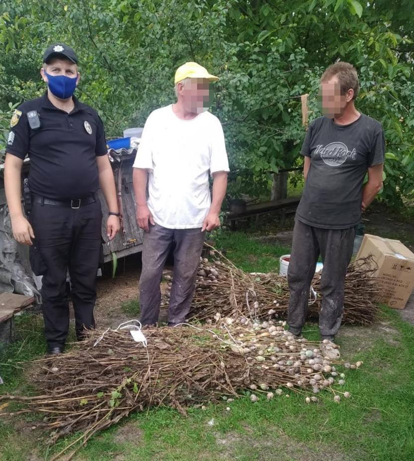 Плантація снодійного маку – на Сокальщині поліцейські виявили незаконні посіви наркотичних рослин
