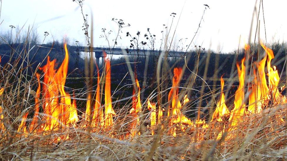 36-річна жителька села, що на Сокальщині, отримала сильні опіки обличчя через спалювання сухої трави