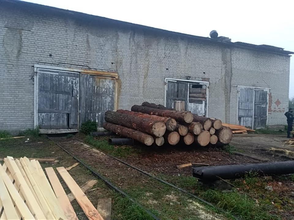 На Сокальщині правоохоронці вилучили незаконно зрубану деревину