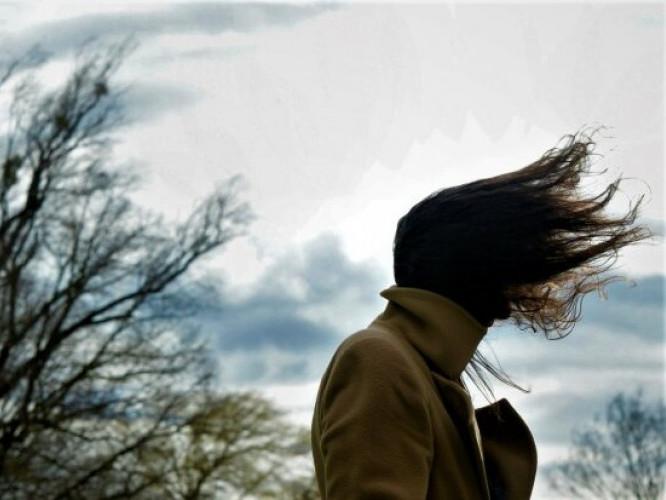 На Львівщині оголосили штормове попередження: що робити, якщо вітер дуже сильний?