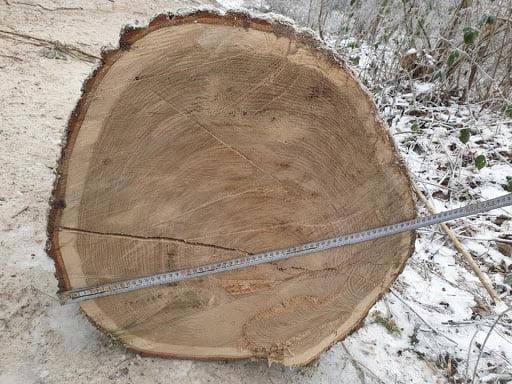 Чоловіку, який різав деревину біля с.Поториця на Сокальщині, загрожує до 5 років позбавлення волі