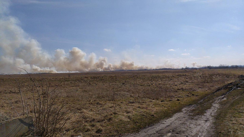 Біля Белза вигорів гектар сухої трави. Причина – необережне поводження з вогнем