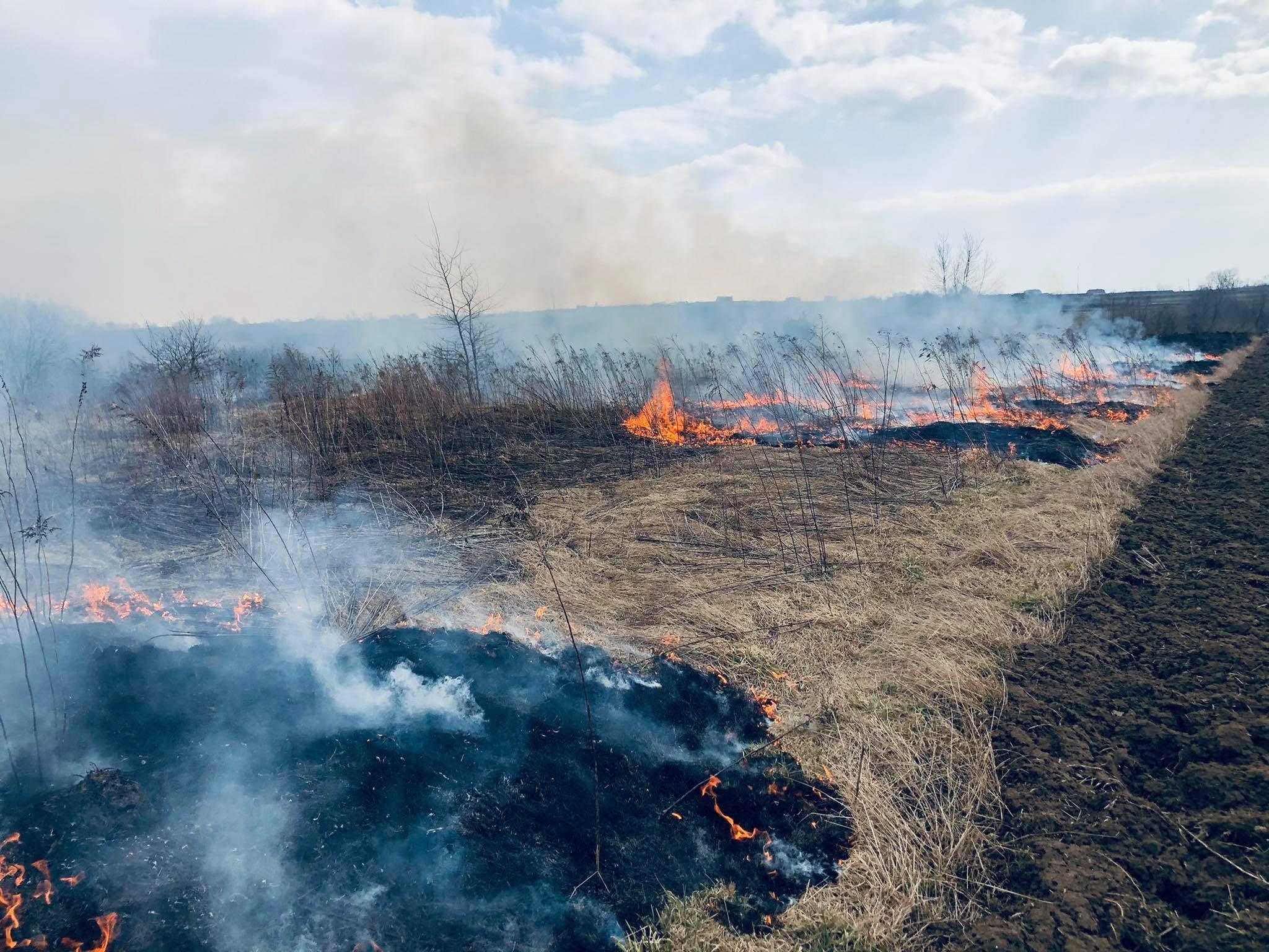 Вогнище, яке залишили після відпочинку молоді люди, ледь не спричинило пожежу на Бендюзькому кладовищі