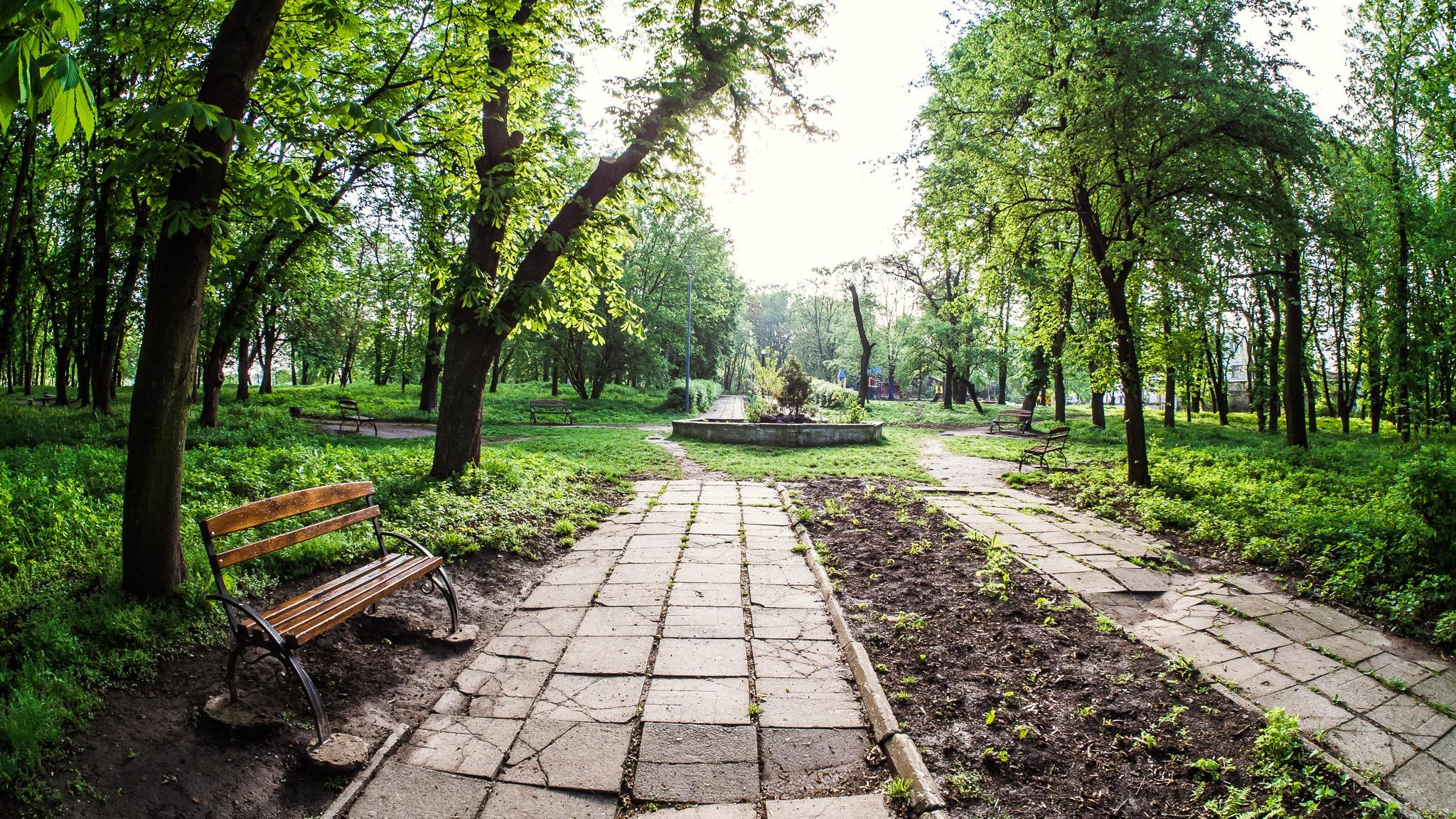 Сокальський парк стане  пам'яткою садово-паркового мистецтва