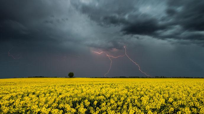 Буде вітряно! Мешканців Червоноградського району попереджають про грози та високу пожежну небезпеку