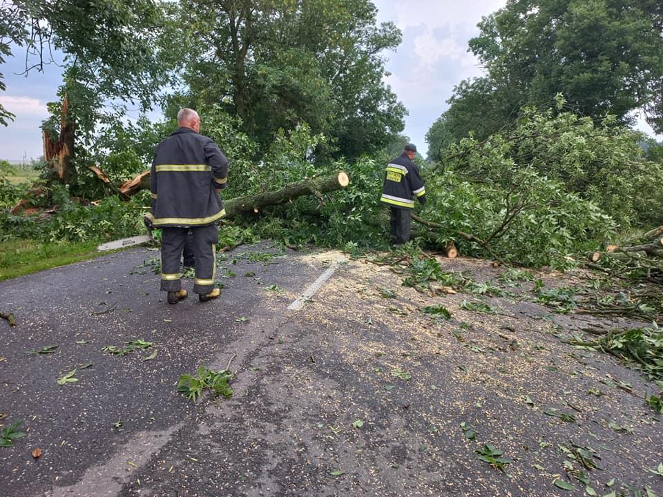 Нічний буревій на Сокальщині повалив дерева та пообривав електричні дроти