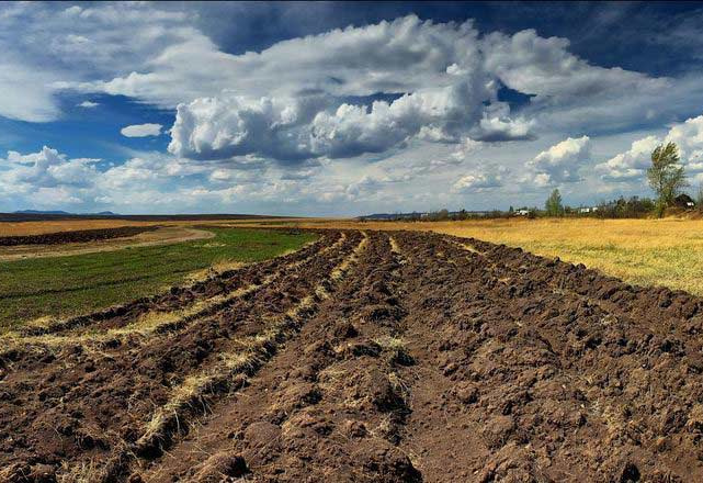 У Червоноградському районі, завдяки прокуратурі, територіальній громаді повернуть землю вартістю майже 6 млн грн